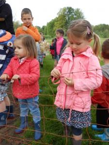 promenade moutons 2015 065